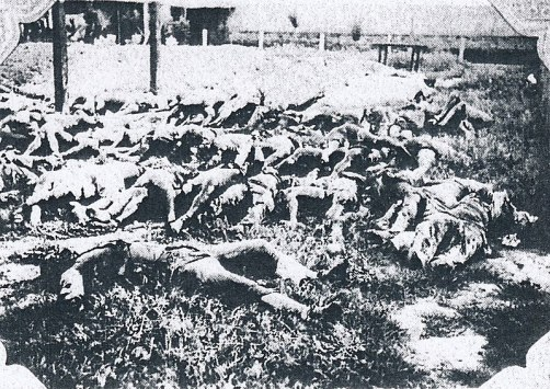 800px-Massacred_corpses_of_Japanese_victims_of_the_Tungchow_Massacre_1